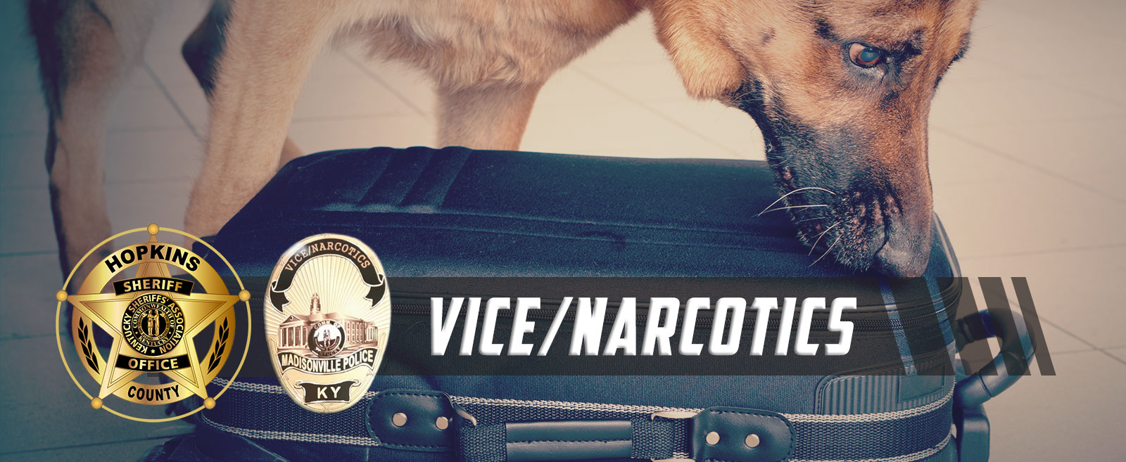 Vice/Narcotics Unit